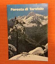 Foresta Di Tarvisio Ministero Dell'interno