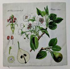 "Fruit & Flowers Throw Pillow Case 16"" x 16"" (0316-002-1)"