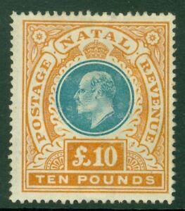SG 145 Natal 1902. £1 green & orange. Fresh mint, filled perfin example. Good...