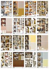 Sandra Kuck bargain paper craft kit for card making, scissors needed, 16 sheets