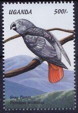 Uganda 1999 MNH, Grey Parrot, Psittacus erithacus, Birds (H79)