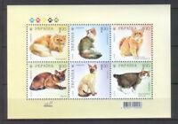 Ukraine 2008 Animals, Pets, Cats 6 MNH stamps sheet