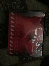 Air Jordan 1s Retro High CDP ,, (2008) Size 10