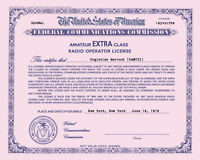 Personalized Repro Old Style Amateur Radio License Ham - Choice of Class, PINK!