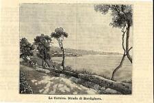 Stampa antica BORDIGHERA la cornice lungomare Imperia 1891 Old antique print