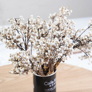 White Fruits Bunch Dried Flowers Bouquet Nature Berries Stem Home Decor