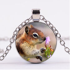 Photo Cabochon Silver Fashion Glass Necklace pendant(squirrel and flower