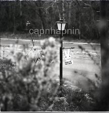Abstract LAMP POST & Folk Art RABBITS FOR SALE Sign Vintage 1970 Negative Photo