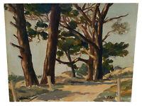 VINTAGE ASILOMAR CALIFORNIA COASTAL LANDSCAPE TREES OIL PAINTING BY DAVID ESLER