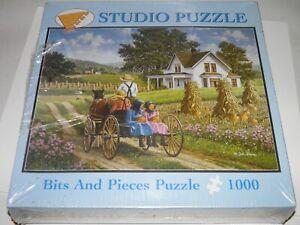 Bit & Pieces John Sloane ''a perfect pair'' 1000 pieces studio Puzzle