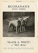 BULL TERRIER ENGLISH DOG Black & White Scotch Whisky Advert Buchanan's Red Seal