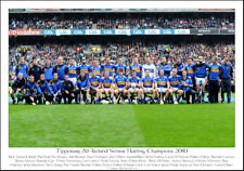 Tipperary All-Ireland Senor Hurling Champions 2010: GAA Print
