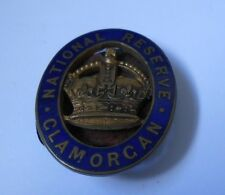 enamel lapel badge of the Glamorgan national reserve