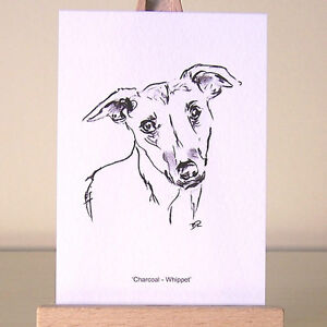 Whippet drawing on a tiny ACEO art card delicate and powerful charcoal portrait