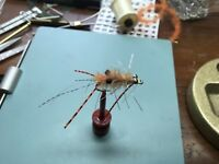 saltwater flies Ascension Bay EP Sand  Mantis Shrimp BC Size 6 Bonefish,permit