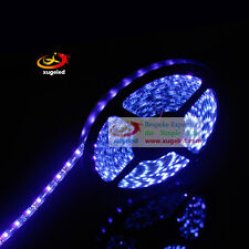 3528 Purple 395-405nm UV Ultraviolet 60LED/M 5M300LED Waterproof Strip Black FPC