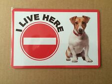 Jack Russell Beware of the Dog Design Metall Türschild