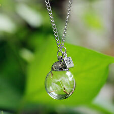 Crystal Ball Real Dandelion Seed Wishing Wish Necklace Long Silver Chain Jewelry