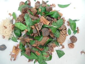 36 Blisterpack Dekomix mit Zapfen Herbstdeko für Tisch und zum beduften