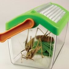 Insektenhaus Insektenbox mit Belüftung Insektenbetrachter Mini Terrarium