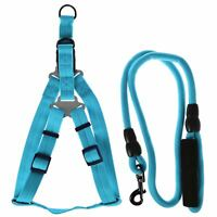 Max Care XL Adjustable Dog Rope Lead Safety Harness Set Puppy Leash Soft Pet