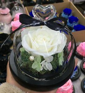 Eternal Rose flower Preserved rose everlasting rose flower gift with Led Light