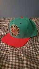 Mitchell & Ness Vancouver Grizzlies NBA Hardwood Classics Fitted Hat Cap 7 3/8