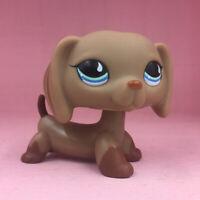 LPS Littlest Pet Shop 518 Chocolate Puppy Boy Toys Gift Collection Dachshund Dog