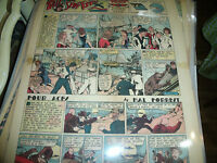 Sunday Color Comic Strips Laminated Lot of 33 1930s Li'l Abner Blondie The Nebbs
