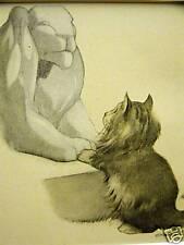 Oliver Herford Angora Kitten & Sphinx 1911 Cat Art Print Matted