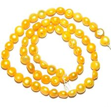 """NP161 Yellow 7mm - 8mm Semi-Round Button Cultured Freshwater Pearl Beads 15"""""""