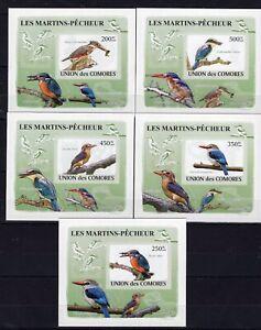 Comores / Komoren - Birds / Vögel / des oiseaux Hard Cards DeLuxes - MNH** Del.7