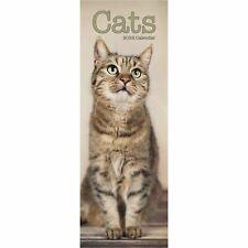 Cats Calendar 2022 Cat Slimline SLIM 15% OFF MULTI ORDERS!