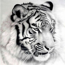 3d diy diamond embroidery painting animal cat tiger 20*20 см.