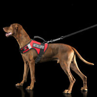 Emotional Support Dog Id With Copy And Esa Dog Tags