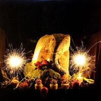 Peter Buck – Peter Buck Vinyl LP 2012 NEW Lead Guitarist of R.E.M. REM