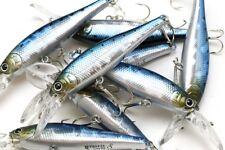 LUCKY CRAFT JAPAN Pointer/B'Freeze 65LB-S -02380074Metallic Sardine