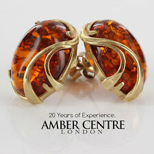 Italian Made Classic Baltic Amber Studs In 9ct Gold GS0142 RRP£360!!!