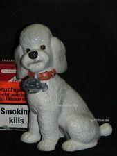 +# A015818_06 Goebel Archiv Arbeitsmuster Hund Dog Pudel Poodle 30-051 Plombe