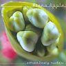 Fiona Apple - Extraordinary Machine (2005) CD NEW