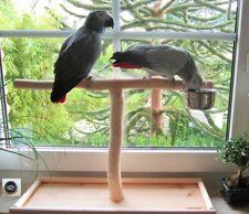 Tischfreisitz für Fensterbank, Papageienfreisitz, Papageienspielzeug, Neuheit 18