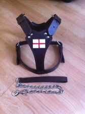 Bull Terrier Stafff Staffie,leather harness With  Free Lead Black (St George)