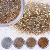 10ml Champagne Super Fine Glitter Dust Powder Sheets Tips 3D Nail Art Decoration