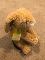 Animal Alley Bunny Rabbit Tan Easter Stuffed Animal Plush Toy Carrot Foot