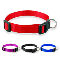 Cheap Plain Nylon Puppy Small Cat Dog Collars for Chihuahua Poodle Yorkie XS S M