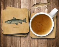 Brown Trout Fishing Gifts Square Coaster Set, High Gloss, 4 pc Set Cork Backing