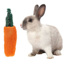 Hamster Chew Toy Natural Grass Carrot For Rabbit Guinea Pig Chinchilla_ec