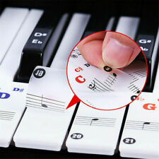 Piano Keys Stickers 49/76/61/88 Keyboards Removable Transparent Learning Sticker