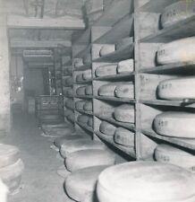 CAVE À FROMAGE c. 1950 - Meules de Gruyère  Jura  - DIV8915