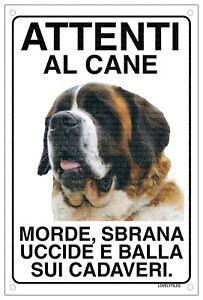 SAN BERNARDO Attenti al cane morde sbrana uccide e balla sui cadaveri 15x20